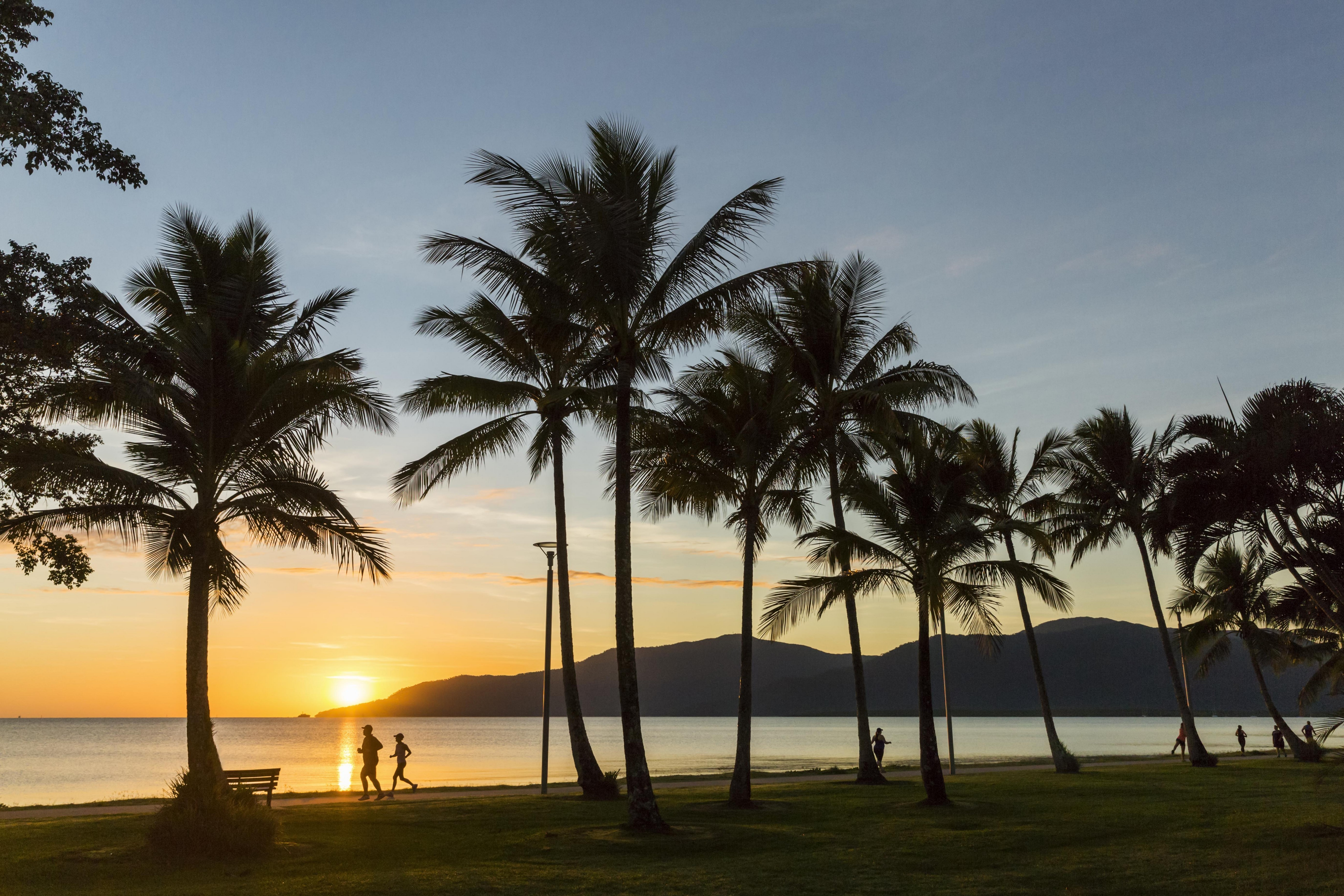 Cairns Esplanade Sunset with Palm Trees